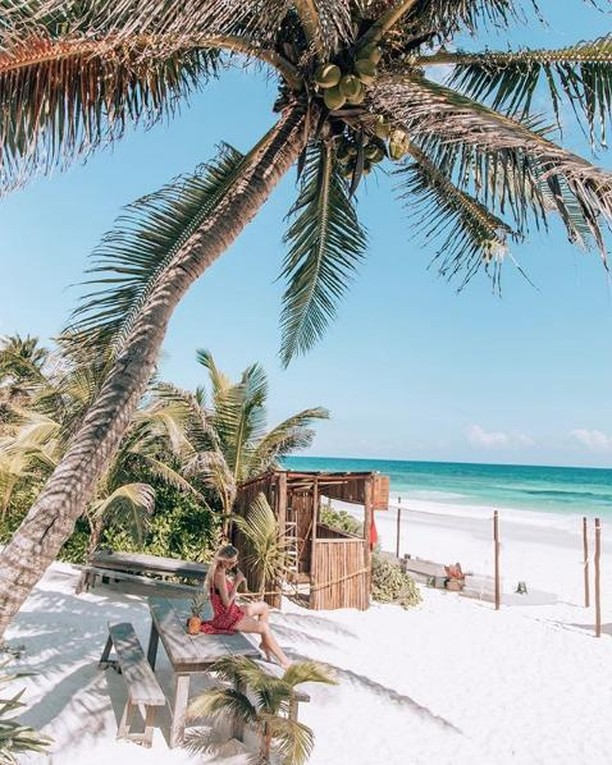 #TravelTuesday goals from @tracy_komlos at @therealcoconut in @sanaratulum 🌴 🏖️