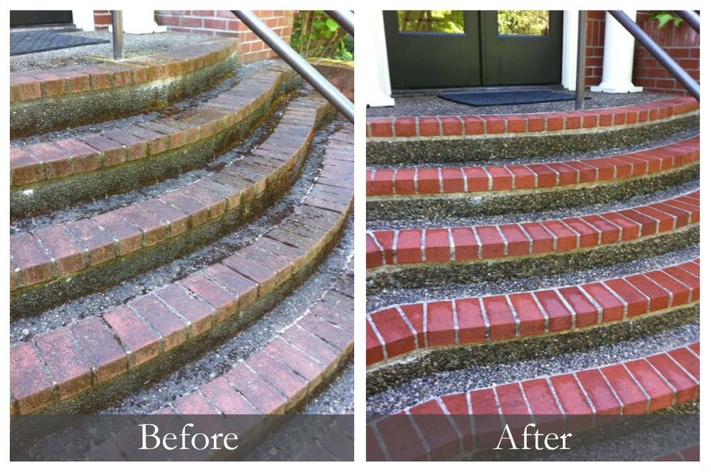 moss-steps.jpg