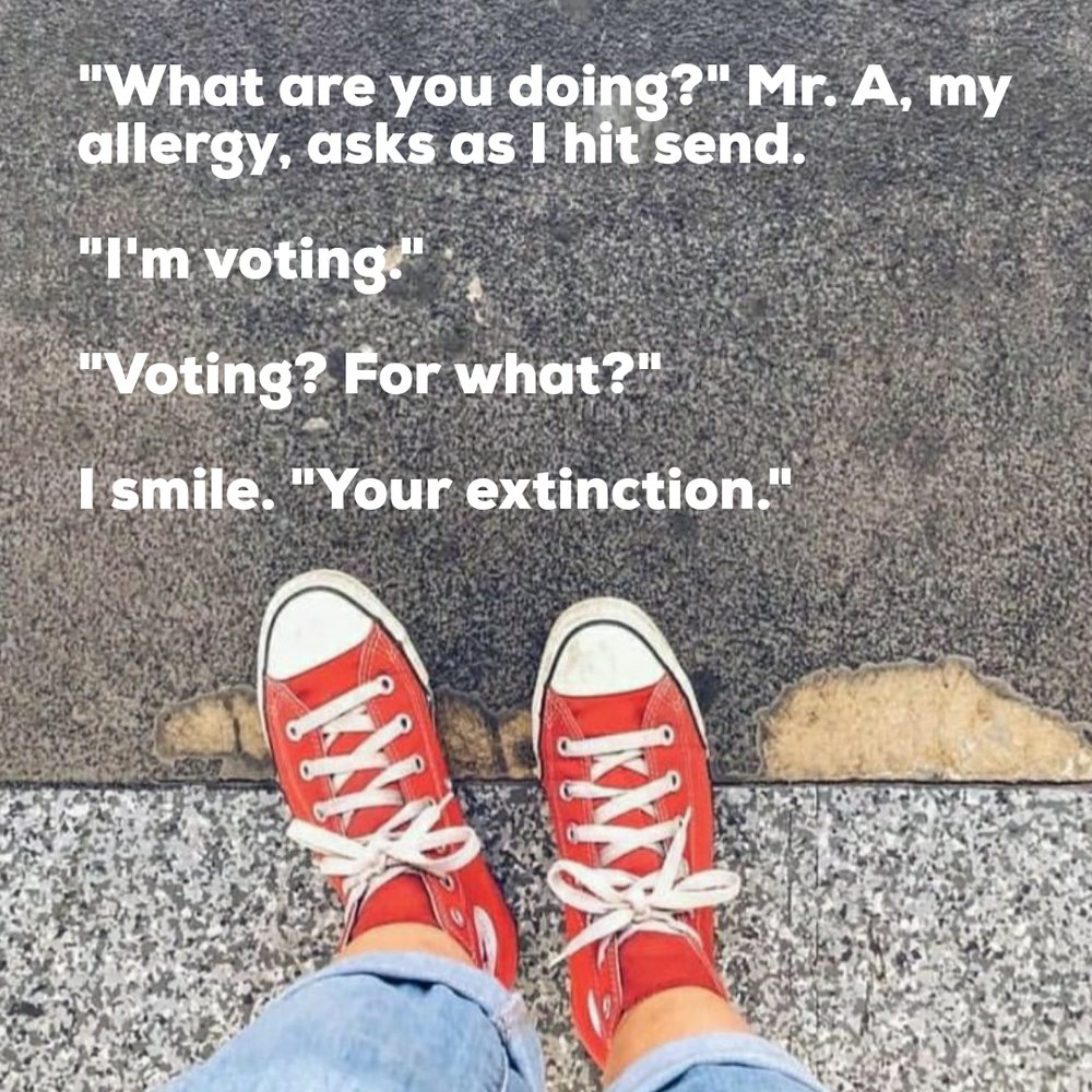 inst vote.jpg