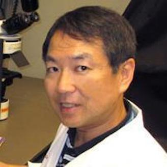 Dr. Atsushi Asakura - Muscle Differentiation Advisor
