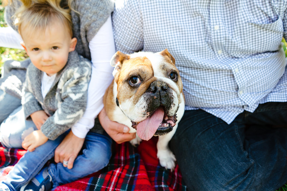 Whidbey Island Family and Pet Portrait Photographer