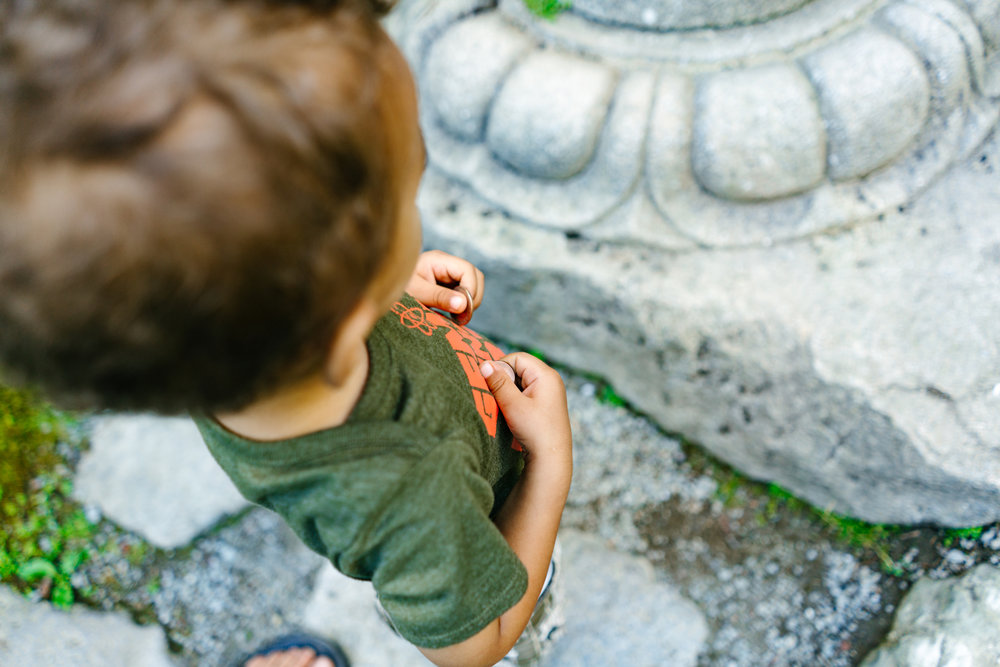 Family Photography at the Seattle Japanese Garden