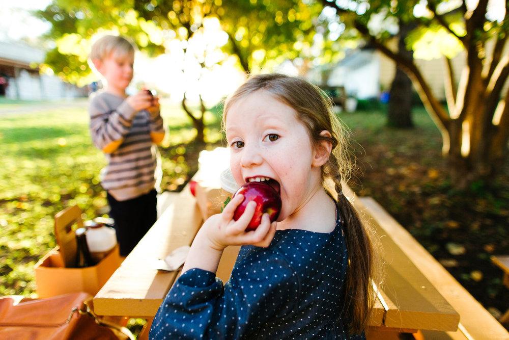 Seattle Orchard Mini Photo Sessions