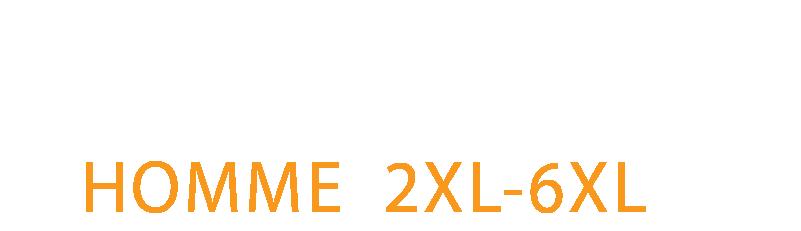 Maximus logo.png