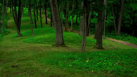 Effigy Mounds -