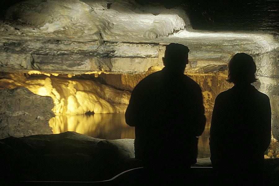 Mystery Cave ForestvilleState Park -