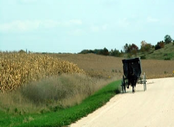 Amish Tours of Harmony -