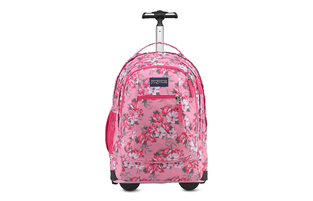 luggage front.png