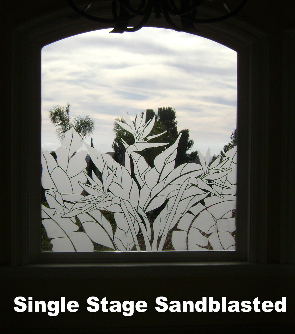 Single Stage Sandblasted bird of paradise and tropical leaf design