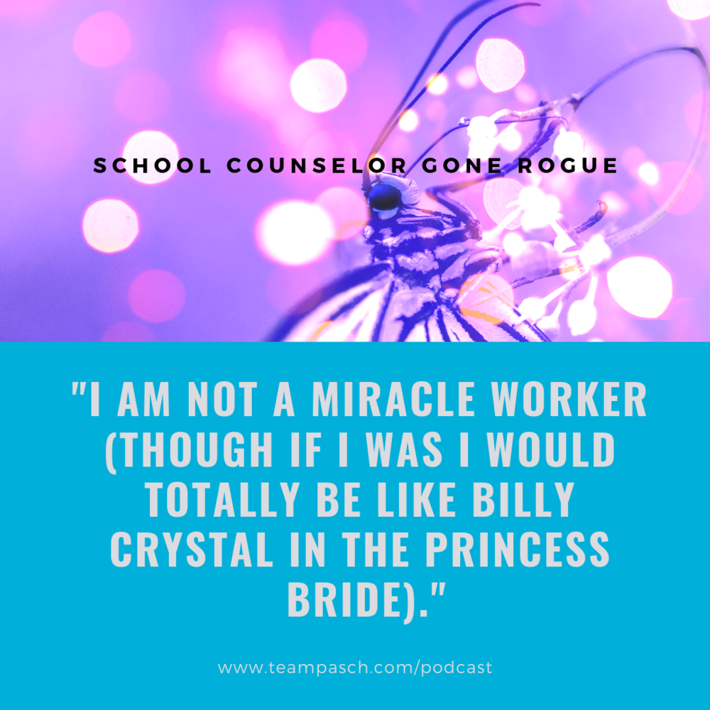 Are you a parent, teacher or counselor with a passion for helping struggling students?   Check out School Counelor Gone Rogue on Stitcher, Google Play and Ituens - or on the site!
