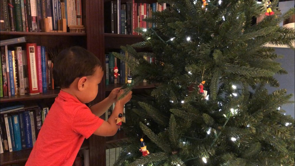 We put up a tree and our kid was actually helpful this year!