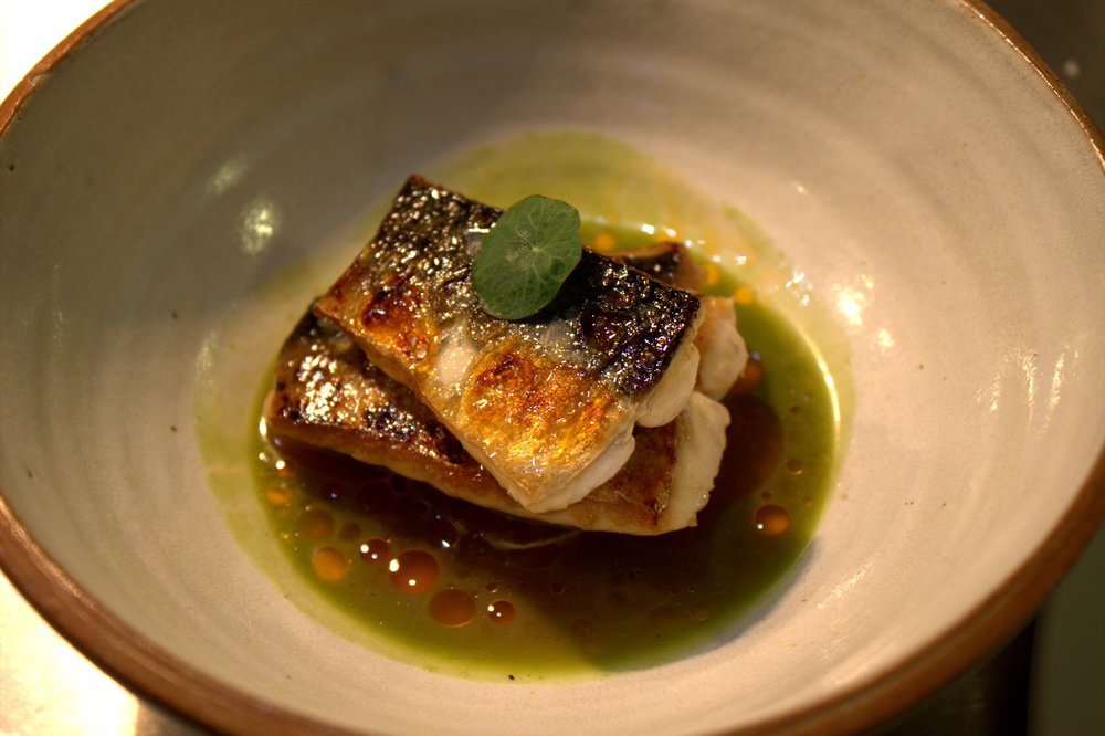 Charred Mackerel, Kombu Braised Daikon, Ginger and Champagne