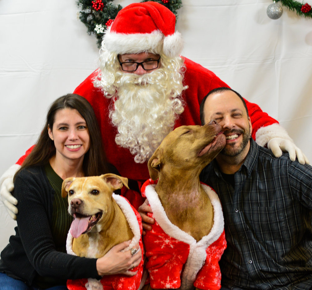 Happy Holidays from the Holistic Dog Mom Family!  Thanks to  Photos by Ashley  for our 2018 family portrait.