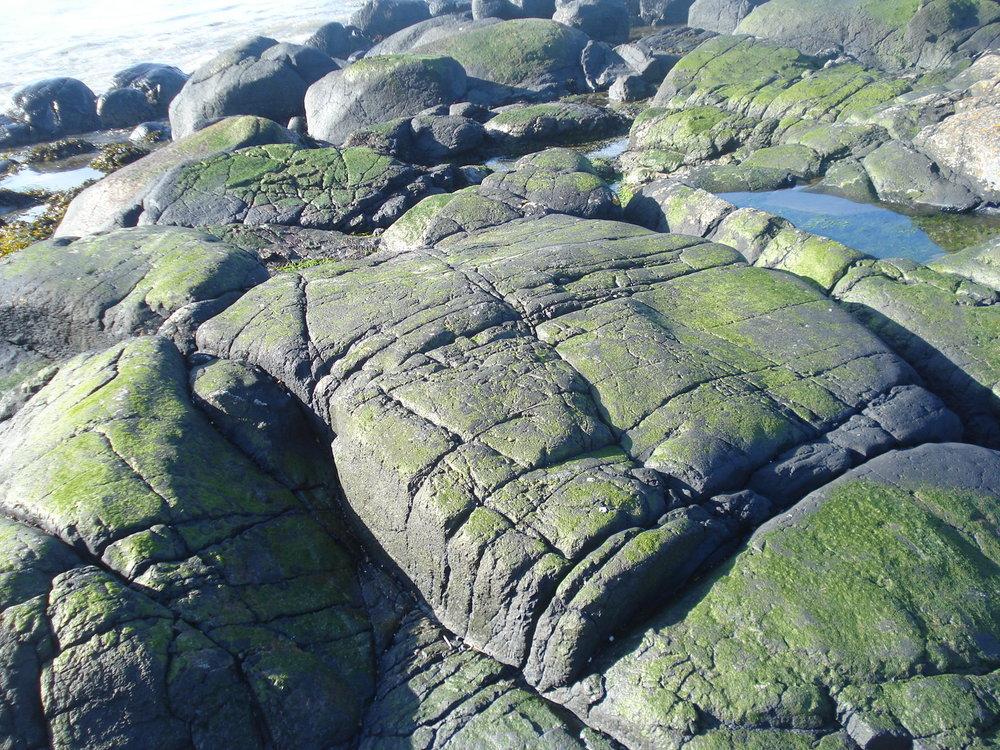 Portballintrae . W.H.Auden rocks