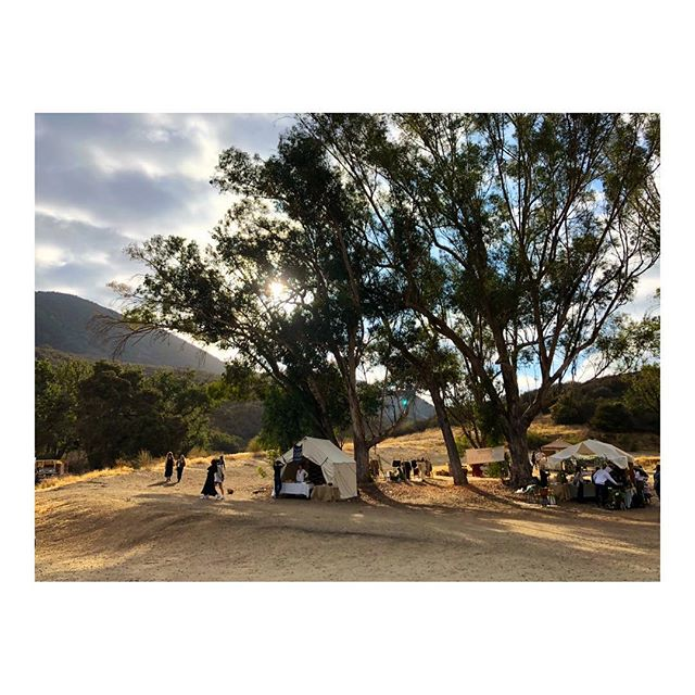 Tree of Life | Mercado Sagrado 2018 #malibu #fireonthemountain #mercadosagrado #california