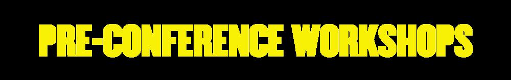 PreConferenceWorkshops.png