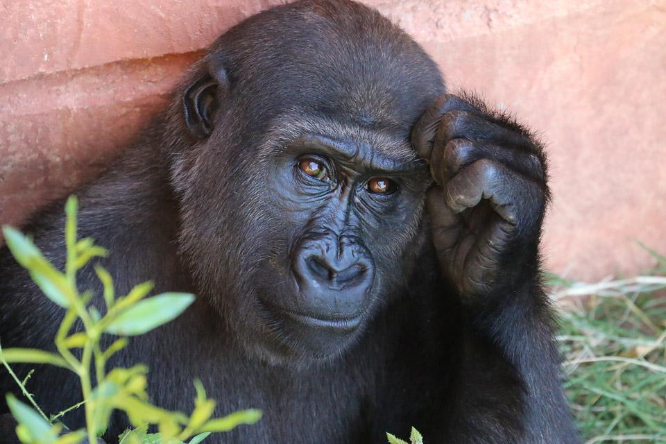 uganda_retreat-17.jpg
