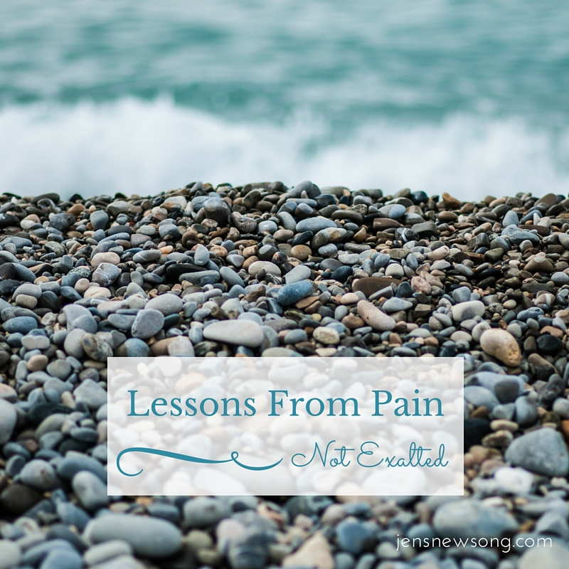 Lessons From Pain