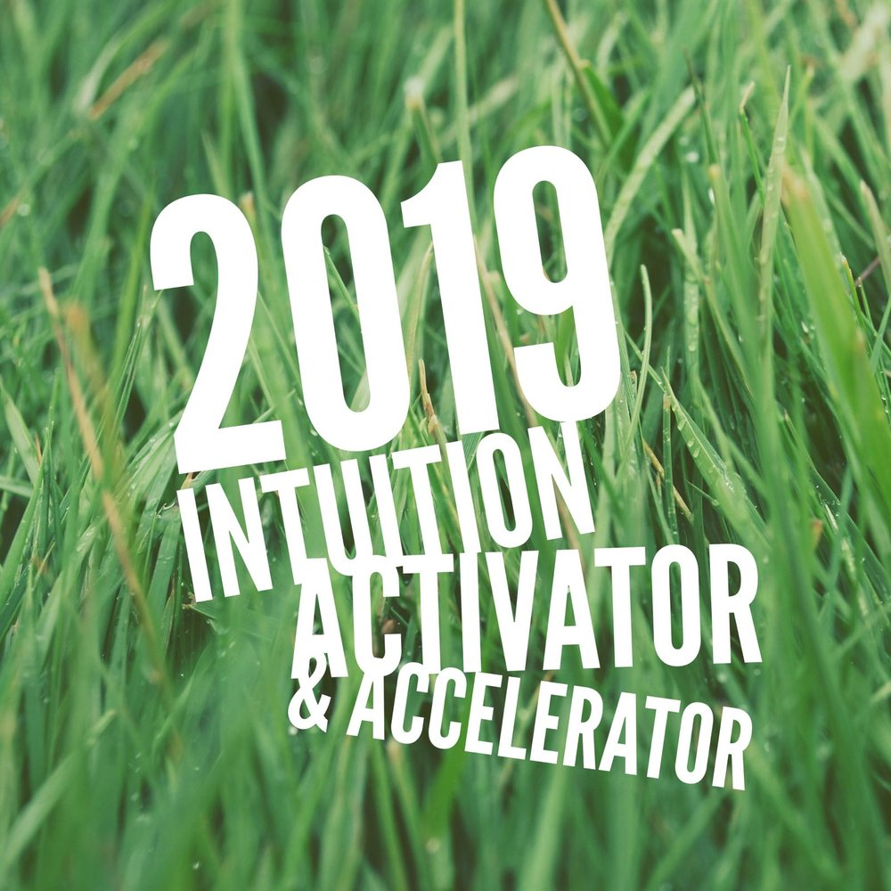 2019 activator & accelerator.jpeg