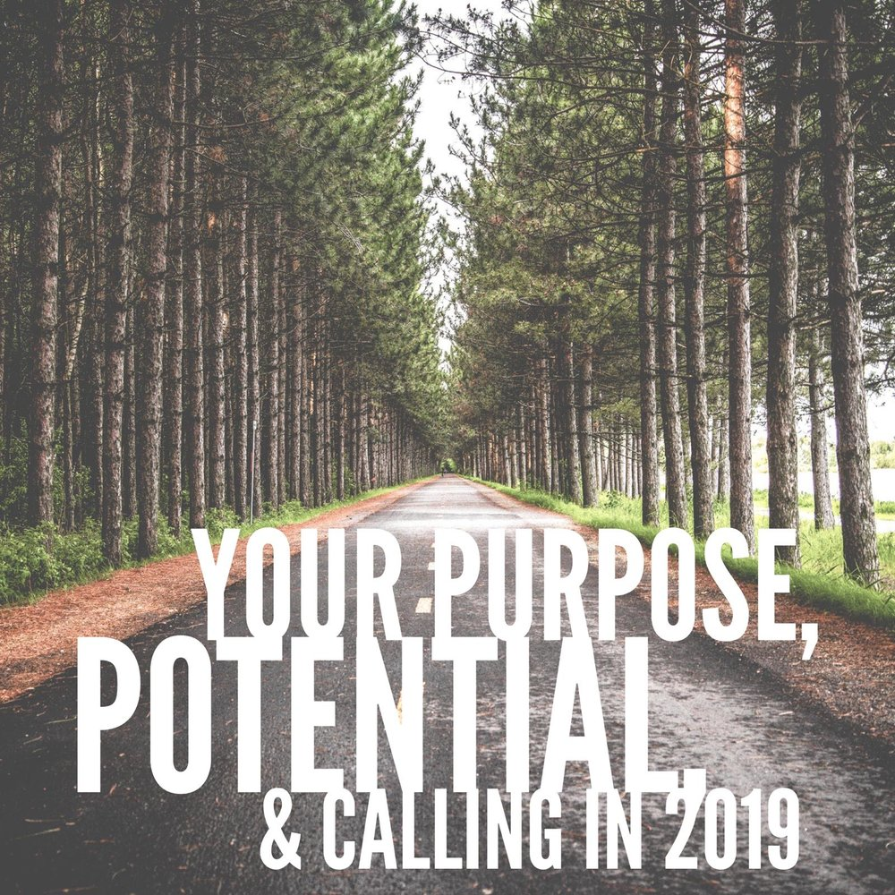purpose-potential-callin-2019.jpeg