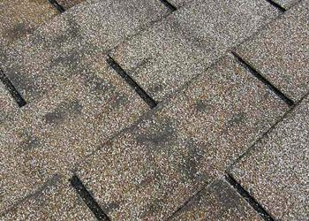 dark-dirty-shingle-palmer-roofing-sonoma-county.jpg