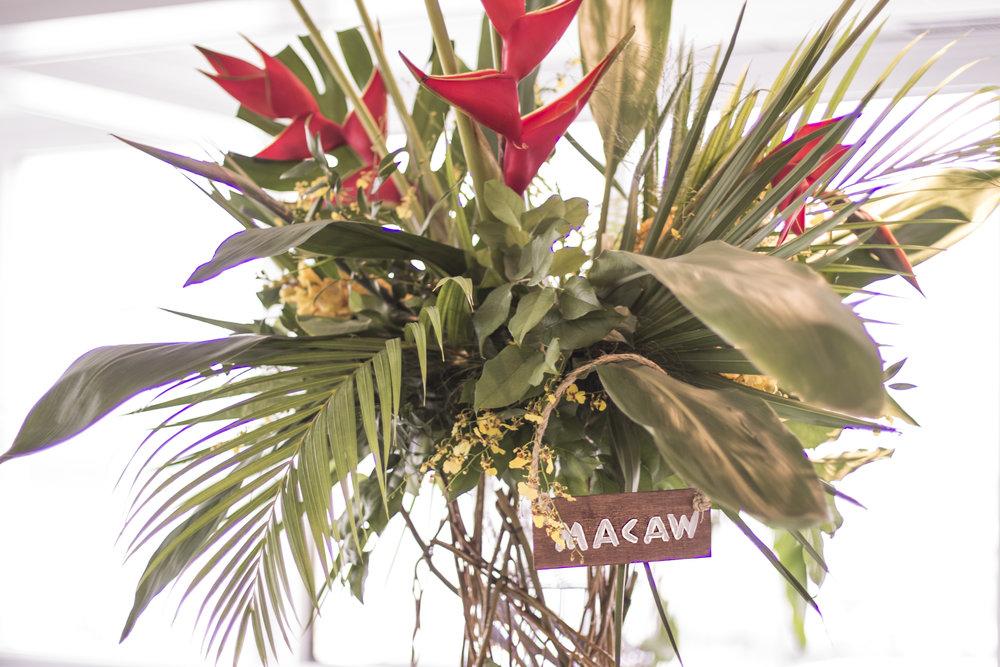 Amazon Adventure B'nai Mitzvah - Magnolia West - 10