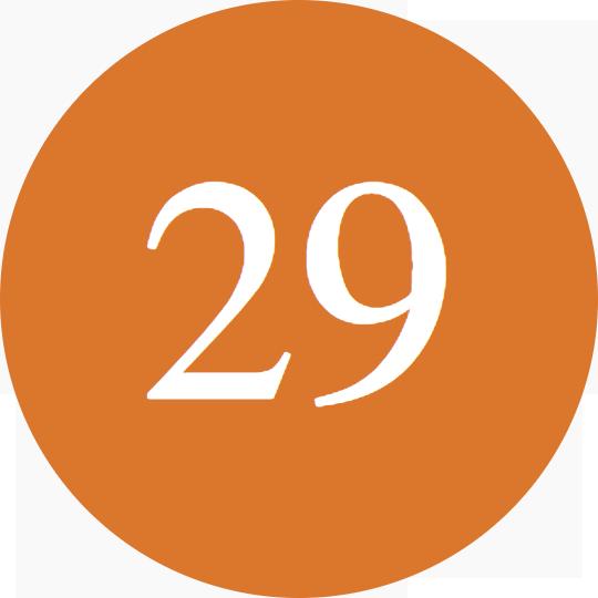 Orange-29.png