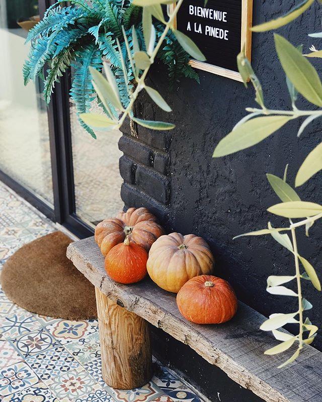 Halloween, bienvenu à la Pinède 🎃 #myfavoriteseason #trickortreat #halloween #autumn #pumpkin #marseille #southoffrance #igrmarseille #beautifuldestinations