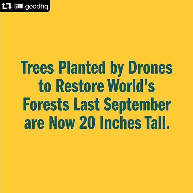 """#repost @goodhq ・・・ This is so cool! Exactly what you like to see when it comes to employing modern technology to tackle real world problems. As @fastcompany reports, """"Last September, the trees were planted by drones. It's early proof of technology that could help restore forests at the pace needed to fight climate change. """"We now have a case confirmed of what species we can plant and in what conditions,"""" says Irina Fedorenko, cofounder of Biocarbon Engineering, the startup that makes the drones. The right combination of species and specific environmental conditions made the restoration work. """"We are now ready to scale up our planting and replicate this success."""" The startup, which also uses drones to plant trees and grasses at abandoned mines in Australia and on sites in other parts of the world, is working with a nonprofit in Myanmar called Worldview International Foundation."""" #saveourforests #forest #greennewdeal #sustainability #sustainable #sustainableliving"""