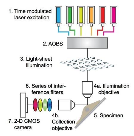 lightsheetdiagram.jpeg
