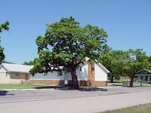 Wann Baptist Church