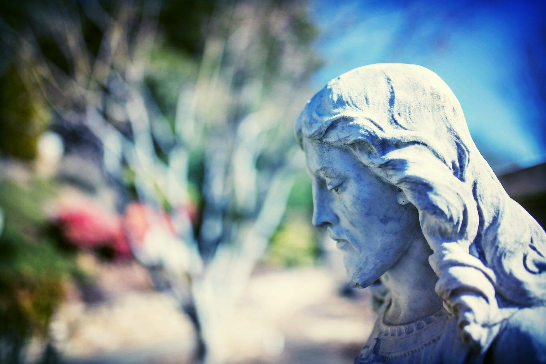 Community Outreach Commission — Sacred Heart Catholic Church