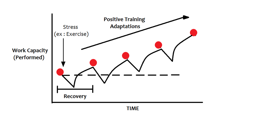 Figure: Proper implementation of the General Adaptation Syndrome. Image from  http://advancestrength.com/strength/how-does-the-body-adapt-to-exercise .