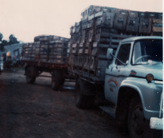 pops truck 1970.png
