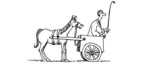 cart-before-horse-cartoon