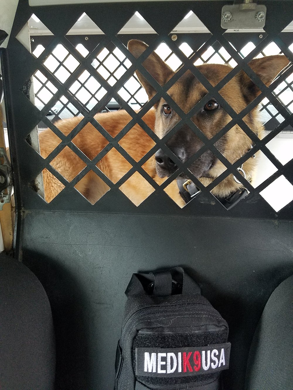 5/14/18 - K9 Ty of the Illinois State Police