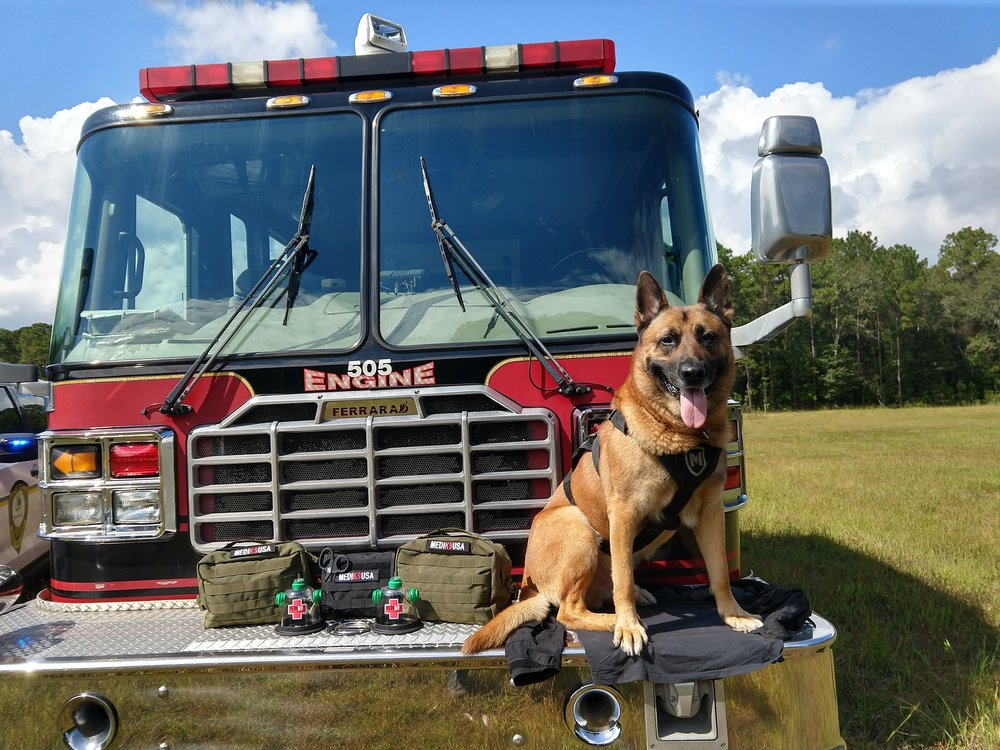10/1/18 - K9 Thor of the Mount Pleasant Police Department, SC