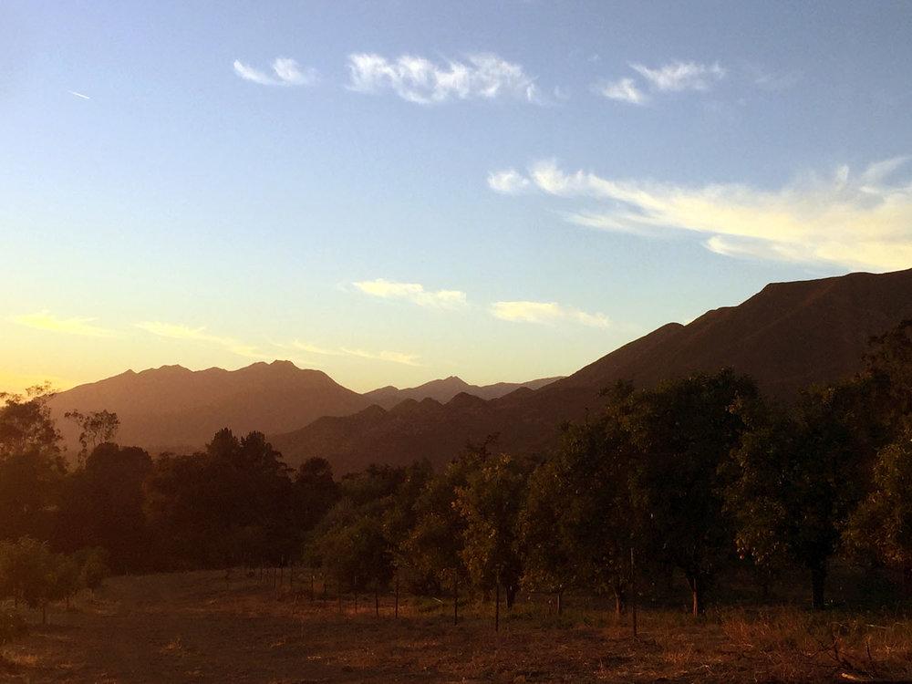Sunset_Hills.jpg