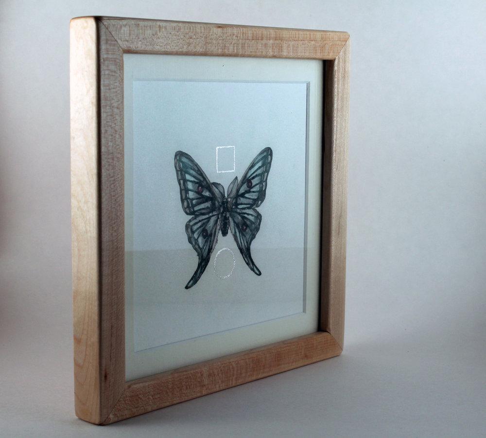 ButterflyMaple13.jpg