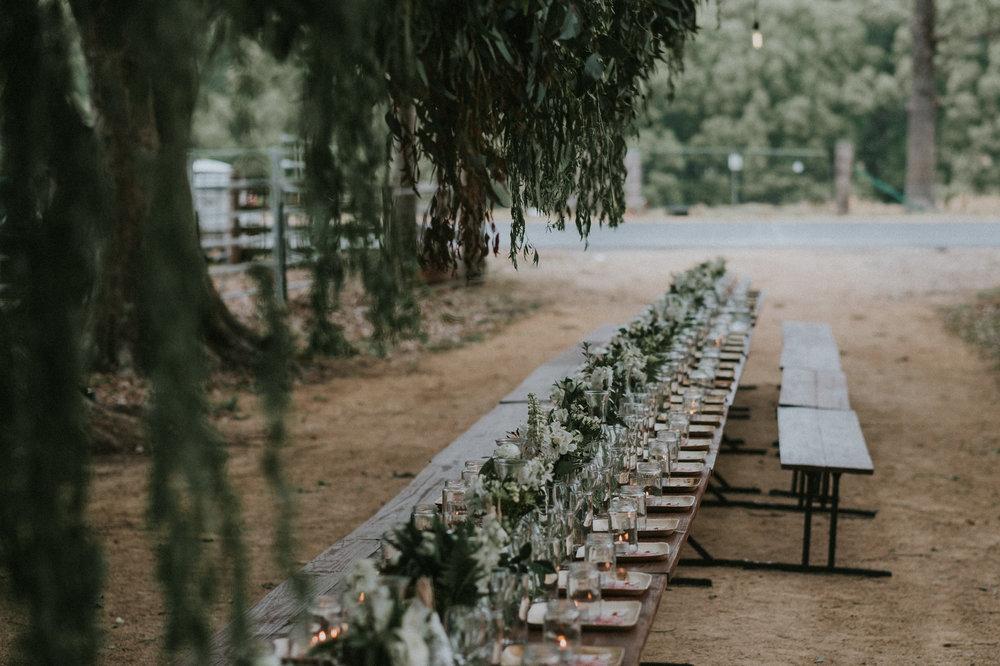 xandereliza0166_Casa_Ciani_Wedding_Crabbes_Creek_a.jpg