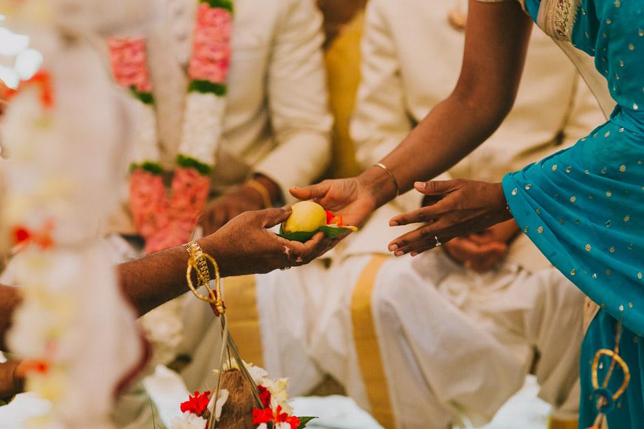 SaraniyaVishnu0499c.jpg