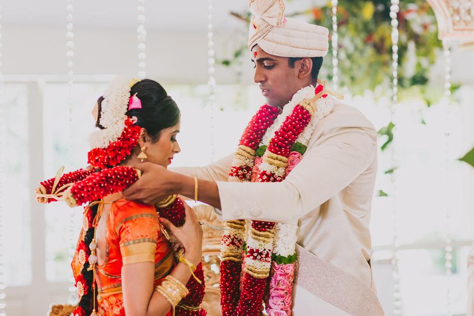 SaraniyaVishnu0668c.jpg