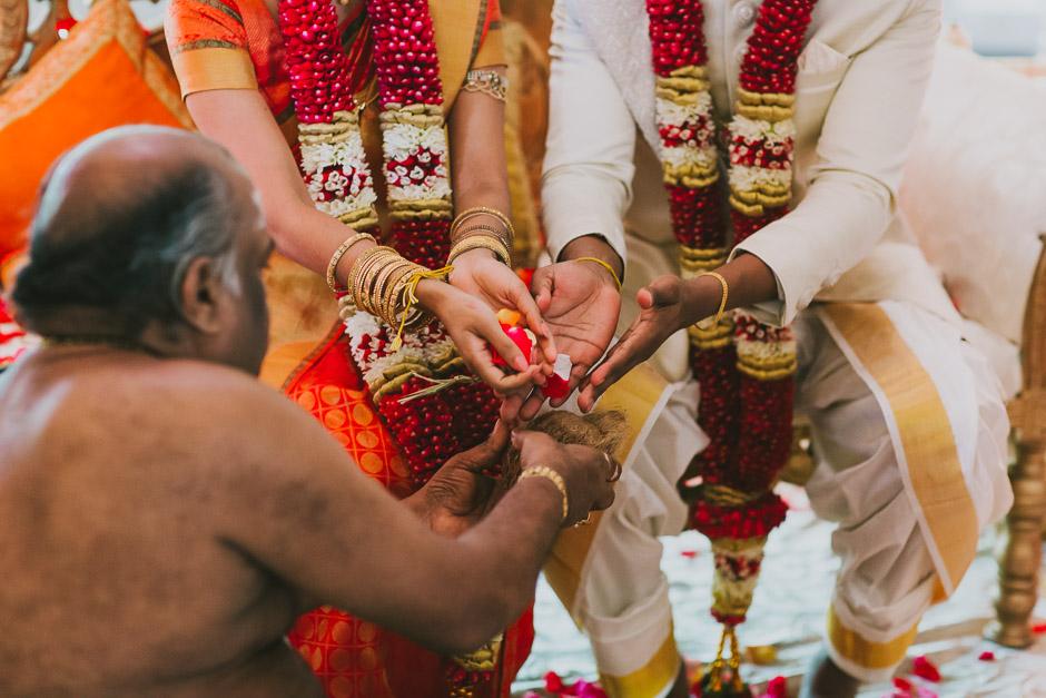 SaraniyaVishnu0678c.jpg