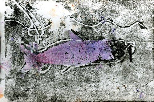 Grayson+Fish.jpg
