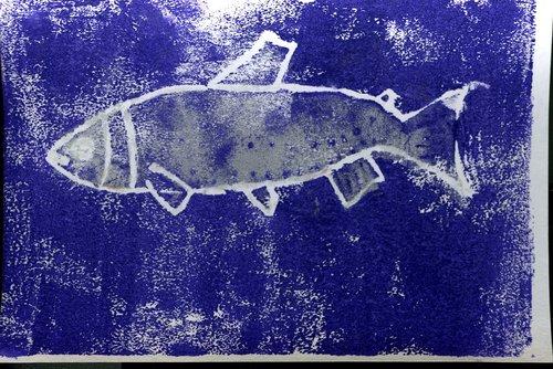 Maddie+Fish.jpg