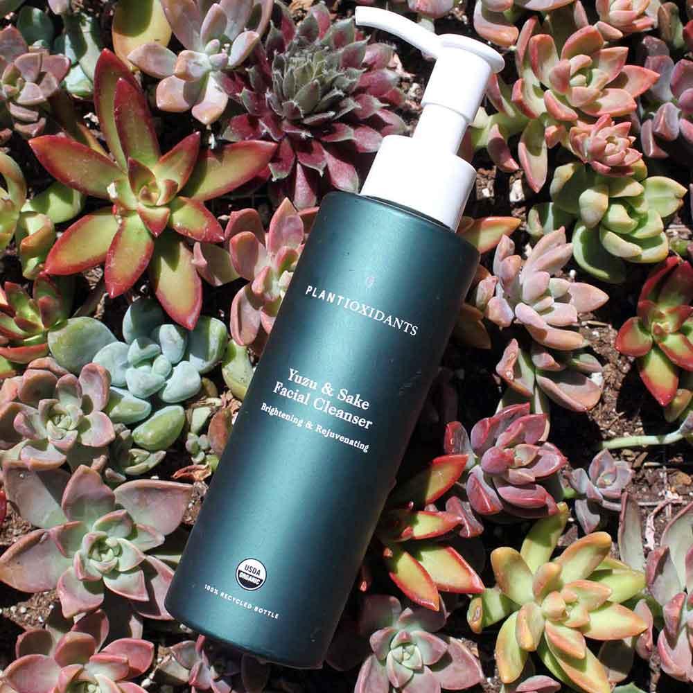 Plantioxidants Yuzu and Sake Facial Cleanser.