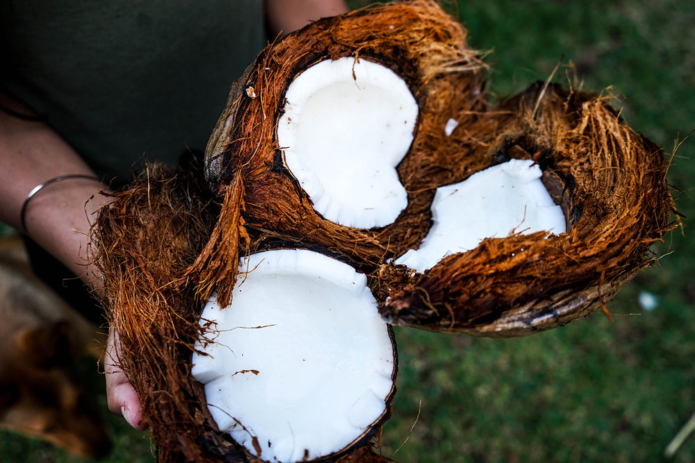 Coconut oil plays a large role in the youthful beauty of Tahitian women.