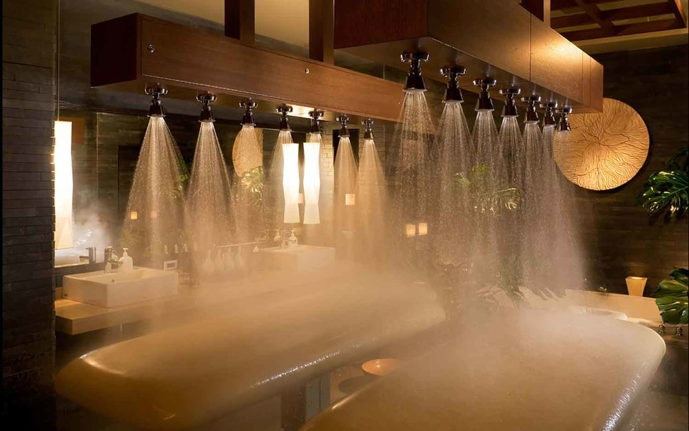 The spa's Vichy shower.
