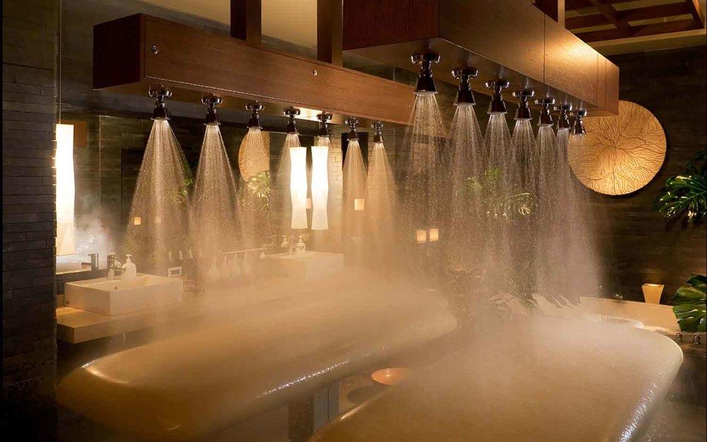 Spa-Vichy-shower.jpg