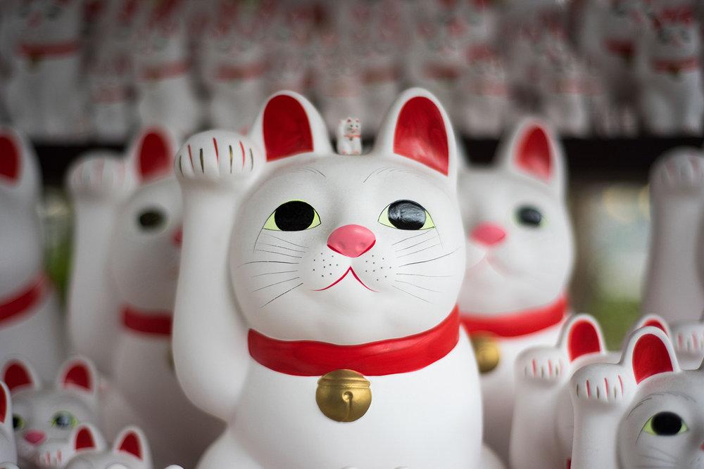 lucky cats.jpg